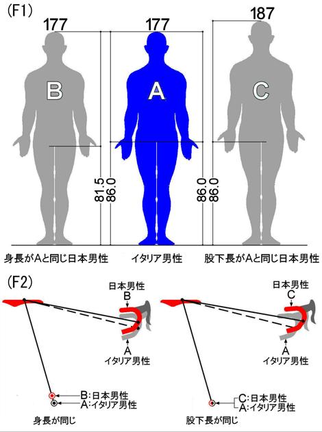 human size